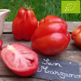 Tomate San Marzano 2 Bio