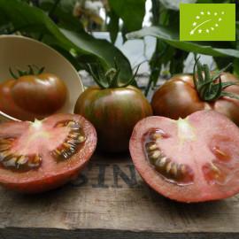 Tomate Red Zebra Bio