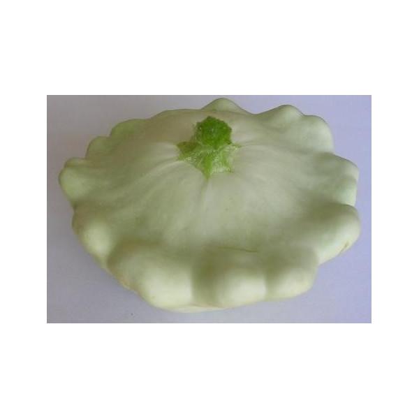 P tisson blanc la bonne graine - Cuisiner patisson blanc ...
