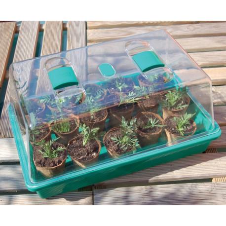 Mini-serre à semis