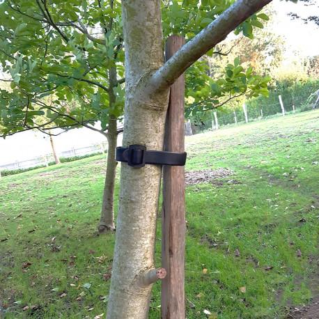 Collier PVC spécial arbres